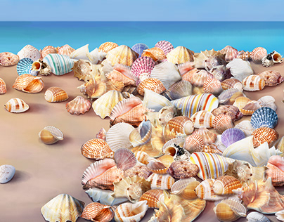 Wallpaper_seashells