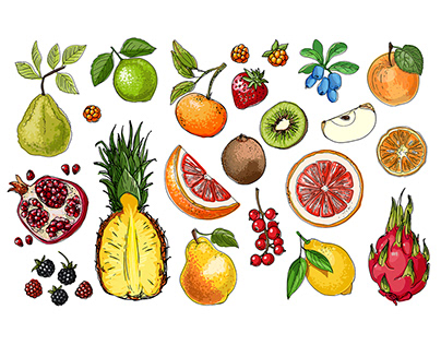 Vector food: Vegetables and fruits