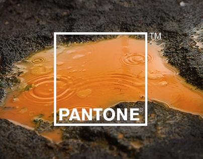 PANTONE - Rain Edition