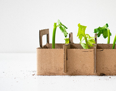 Seedling Tray-Stop Motion