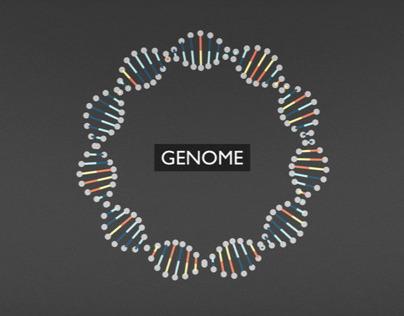 BBC Knowledge - DNA Explainer
