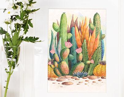Succulent Plants Illustrations