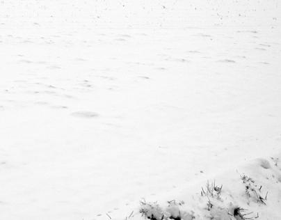 Winter in Prudnik