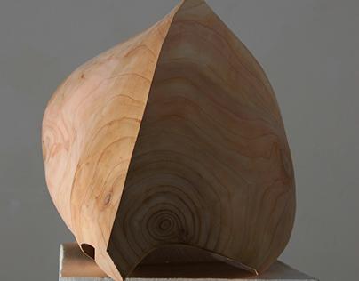 Wood Sculptures, 2007