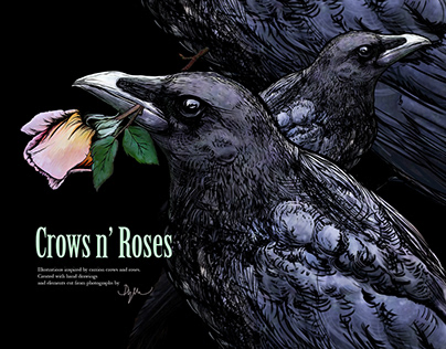 Crows N'Roses - set of Illustrations