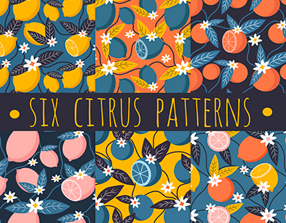 six seamless summer pattern with citrus ornament