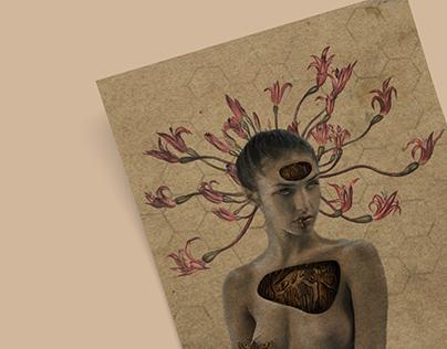 Ilustração | Colagem I