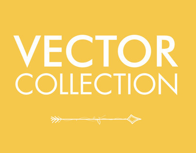 Vector Collection (2011)