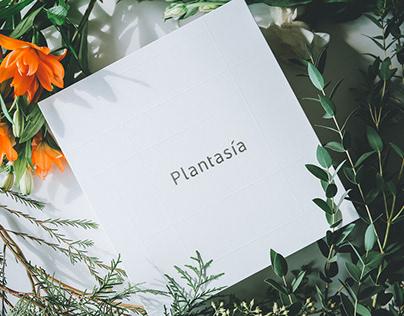 Plantasia 植圆