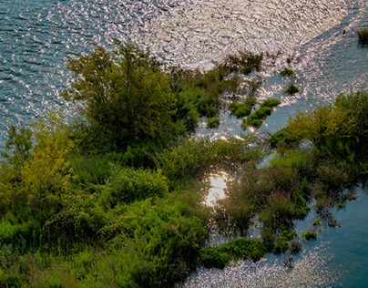River Water   Douro
