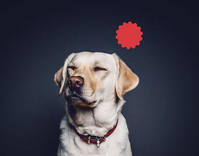 Industrial Puppy - Logo design