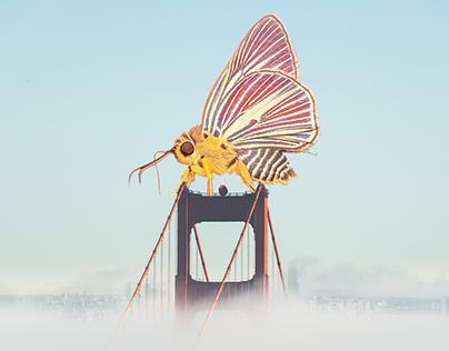 Photomanipulation - Giant Moth By The Bridge