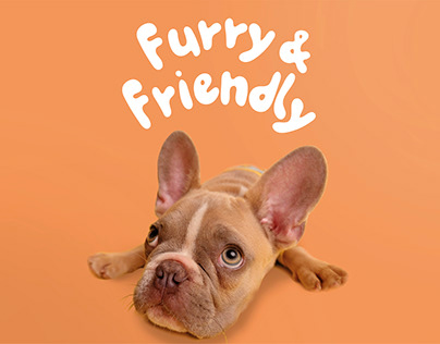 Logo and branding for ''FURRY & FRIENDLY""