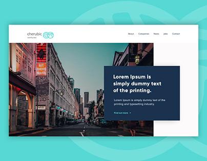 Venture Capitalist website