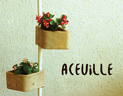 Aceuille
