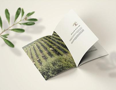 Graphic design, Branding, Powerpoint, magazine. UX UI