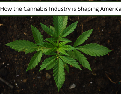 How the Cannabis Industry is Shaping America