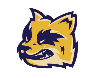 Sport logo practice