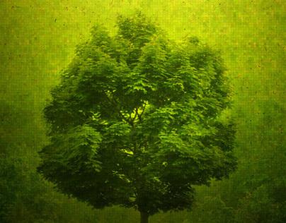 Open Green 2013