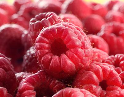 Raspberry day