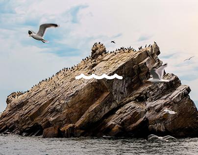 Lake Baikal | Landing page design concept