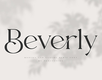 Modern & Luxury Serif Font