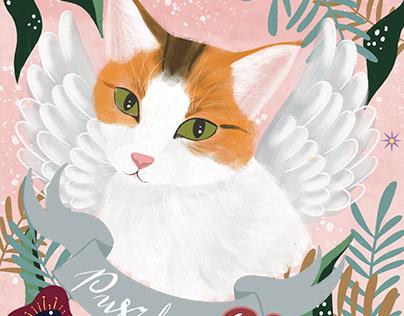 Pet portrait/ cat