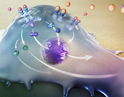 Chemical and Systems Biology