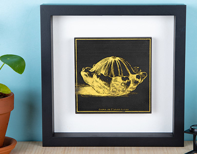 Laser cut antique illustrations