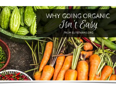 Why Going Organic isn't Easy