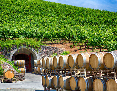 Wine Country...