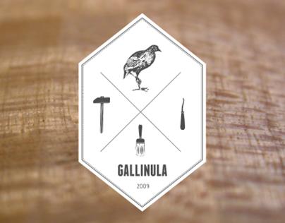 Gallinula Workshop