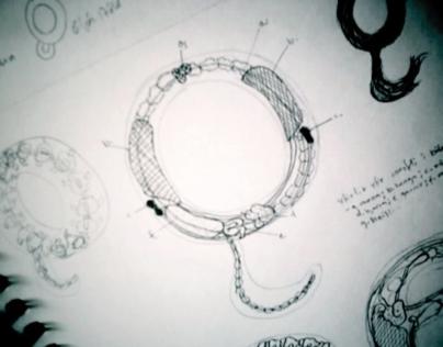 Sigríður Rún - The Making of 'Anatomy of letters'