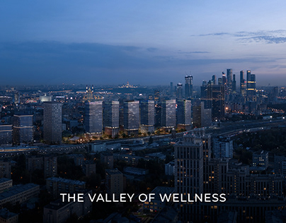 The Valley of Wellness