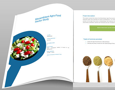 Template design for EOI documents / Editorial design