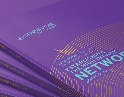 Endeavor | Impact Report 2017