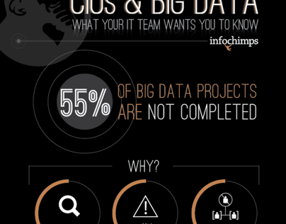 Infographic - CIOs and Big Data