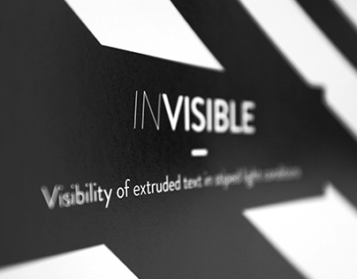 IN/VISIBLE
