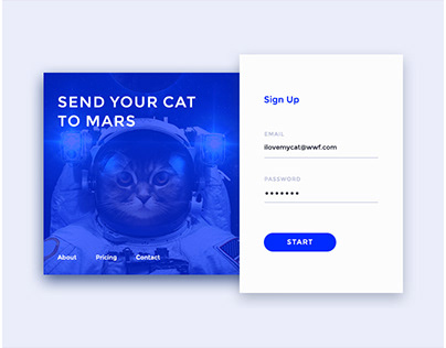 Sign Up Screen Design