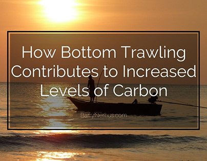Bottom Trawling and Carbon Levels