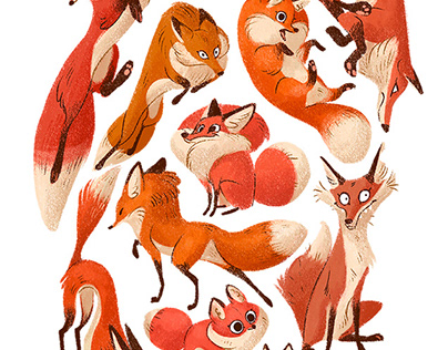 Various Foxes