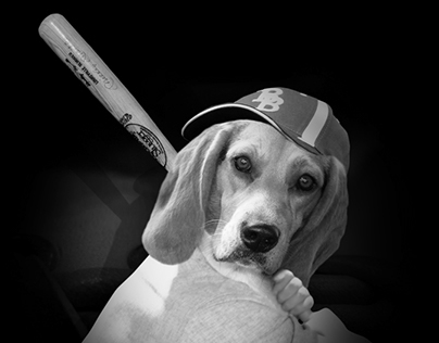 Baseballer