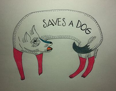 Saves a dog