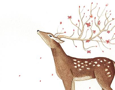 Watercolours Illustrations