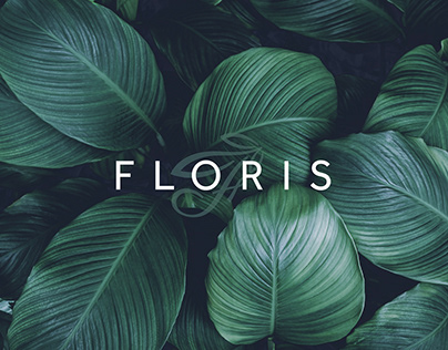 REAL ESTATE IDENTITY / Project FLORIS