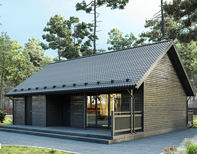 Finnish Houses Visualization Series. House №7