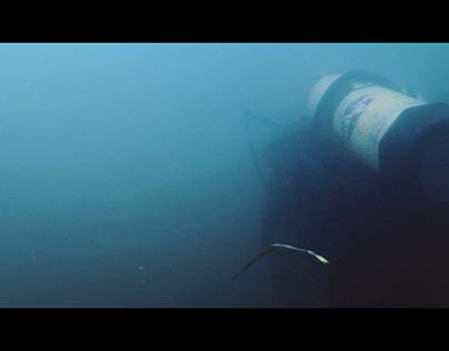Aimie Néron | Archéologie subaquatique