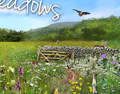 Into the Meadows
