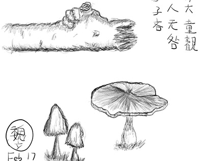 FungibleMemory