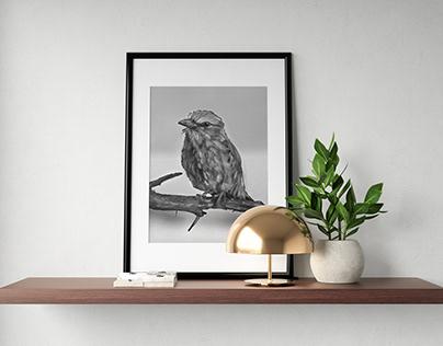Ilustración Digital: Pájaro Blanco y Negro